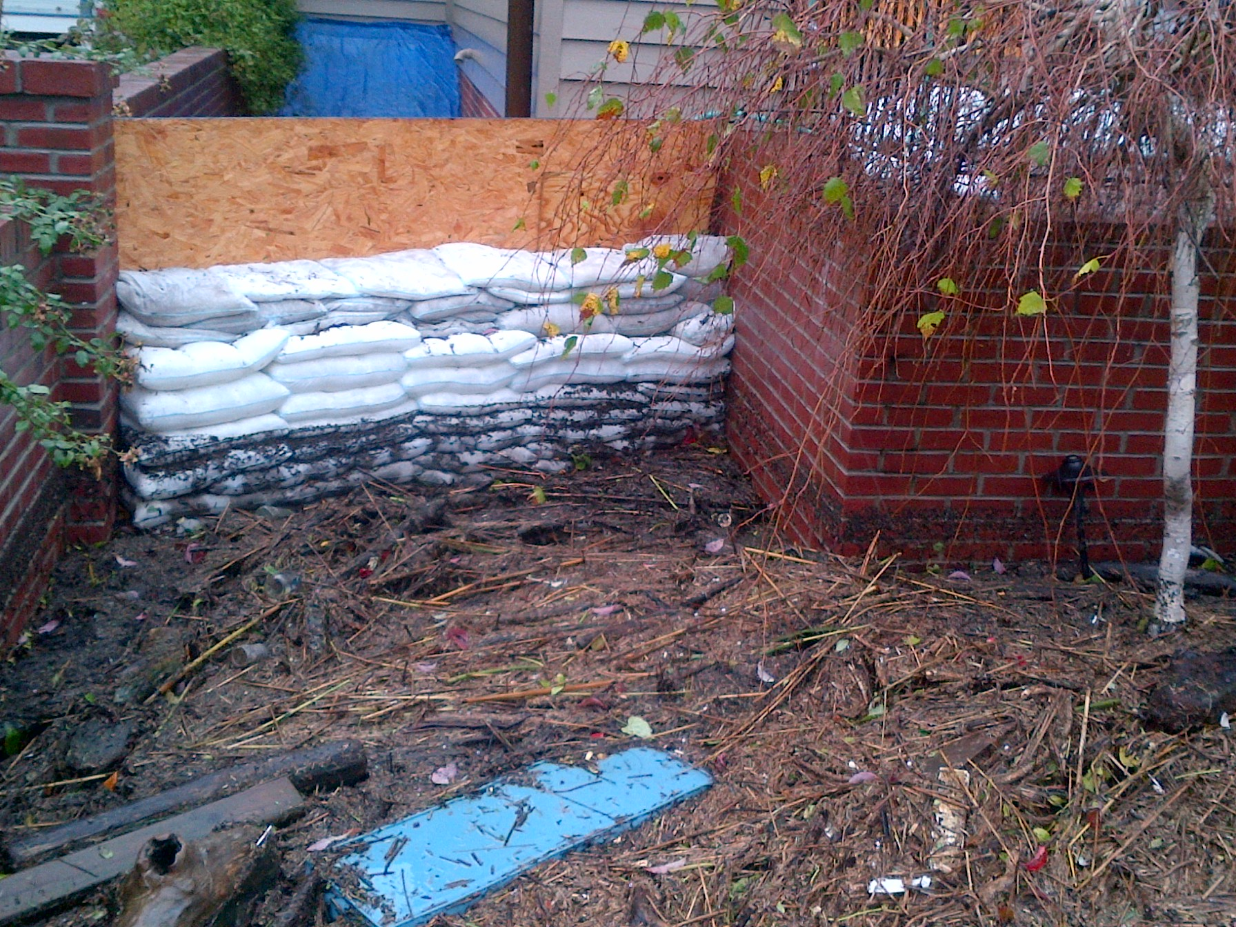 Hurricane Sandy Floodsax wall.jpg