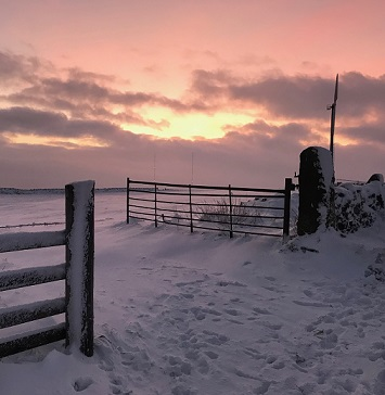 Fading winter light in the snow at Pole Moor near Huddersfield, West Yorkshire. Photo by @andyhirstpr
